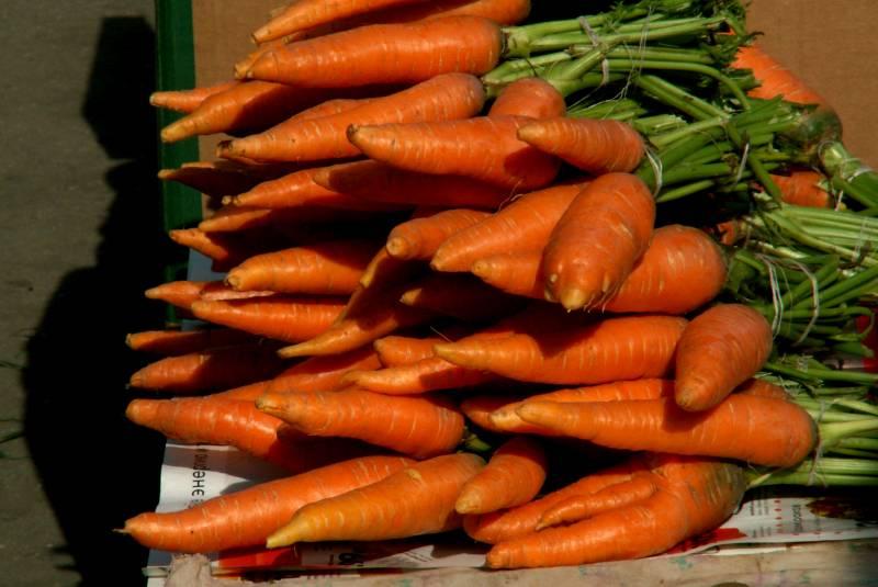 Значение сна морковь